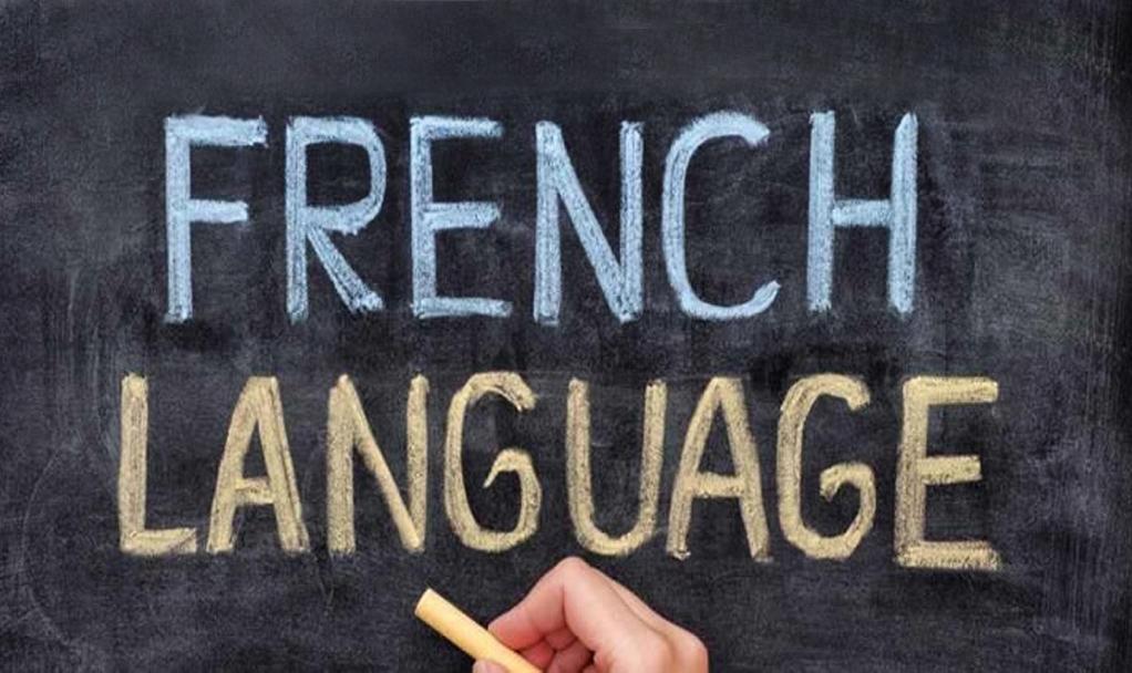 Gr. 8- French